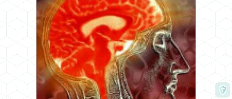 Морфологические изменения при токсическом гриппе и гриппозном геморрагическом энцефалите