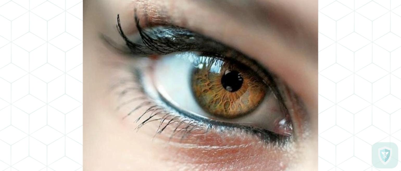 Глаза как двигатель прогресса