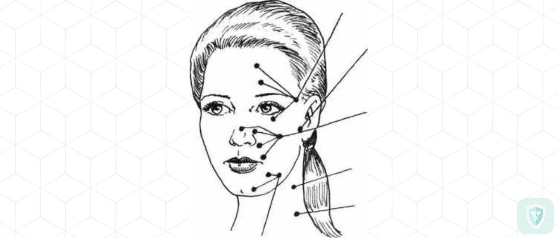 Челюстно-лицевой нерв