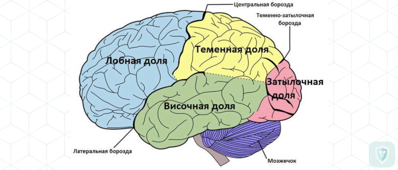 Наблюдение поражения головного мозга