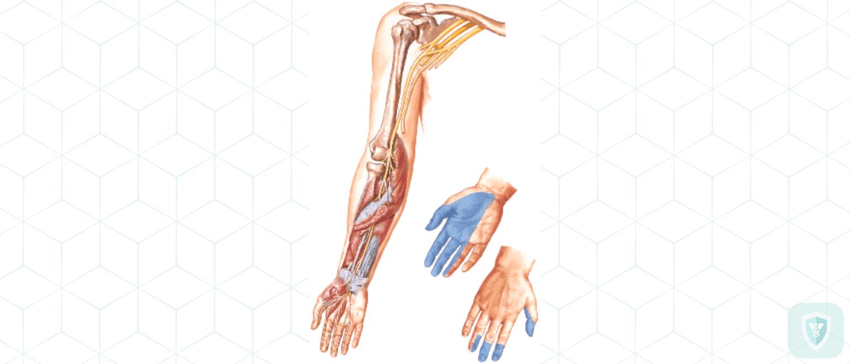 Анатомические изменения в периферических нервах