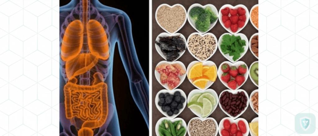 Воздействие токсинов на организм — как бороться с токсинами в организме?